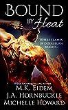 Bound By Heat: A Dragon Shifter Anthology