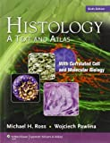 img - for Histology: A Text and Atlas, with Correlated Cell and Molecular Biology, 6th Edition by Ross PhD, Michael H., Pawlina MD, Wojciech (2010) Paperback book / textbook / text book