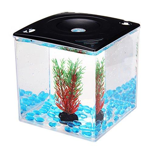 Dioletto Betta Cube Mini Aquarium Black Fish Tank 0.75 gallon, Perceras y Acuarios Bonus Bundle Aquarium Decoration Plant and Blue Magic Cube Pebbles AQG-9 (Betta Fish Cube compare prices)