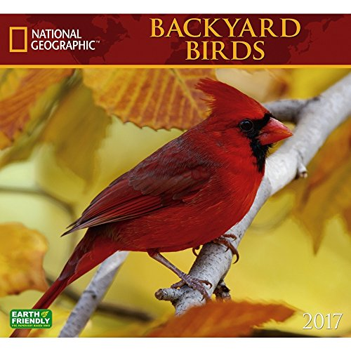 Backyard Birds 2017 National Geographic Wall Calendar