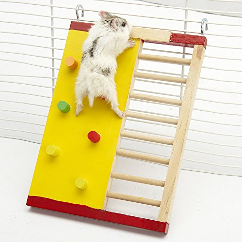 pet-supplies-klettern-leiter-molar-supplies-fur-hamster