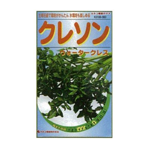 カネコ種苗 園芸・種 KS100シリーズ クレソン ウォータークレス 野菜100 563