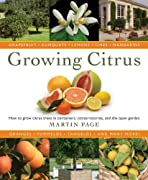 Growing Citrus: The Essential Gardener's Guide