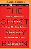 img - for The Ghost in My Brain: How a Concussion Stole My Life and How the New Science of Brain Plasticity Helped Me Get It Back book / textbook / text book