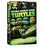 Teenage mutant ninja turtles 3 temporada DVD España