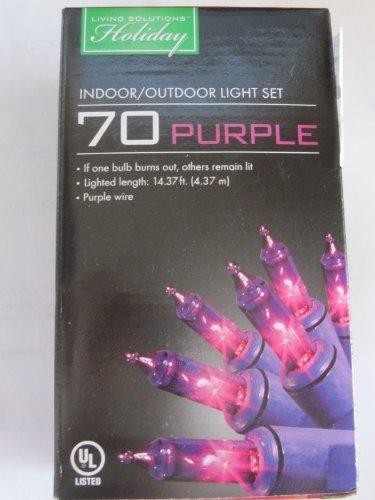 70-purple-indoor-outdoor-light-set-w-purple-wire