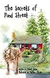 The Secrets of Pond Street