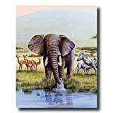 African Elephant Zebra And Deer Animal Wildlife Home Decor Wall Picture 16x20 Art Print