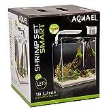 Aquael Aquarium