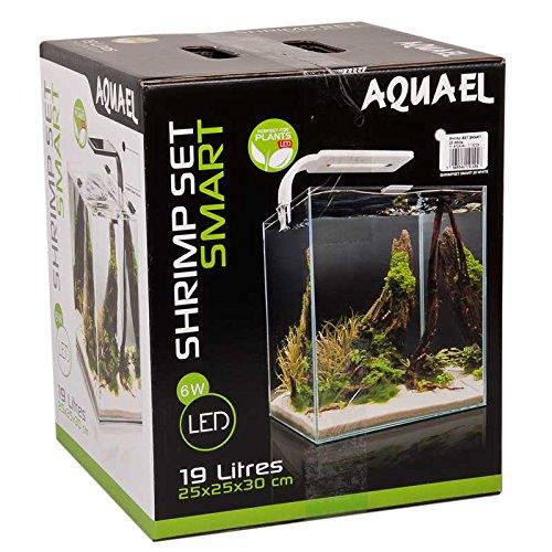 Aquael-Aquarium-Shrimp-Set-SMART-LED-komplett-Set-mit-morderner-LED-Beleuchtung-wei-20-Liter