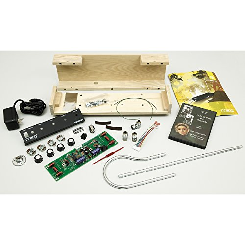 moog etherwave theremin kit arts entertainment hobbies creative arts musical instrument. Black Bedroom Furniture Sets. Home Design Ideas