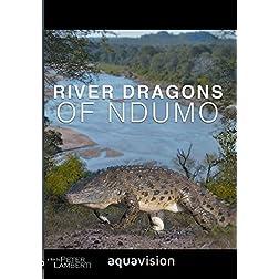 River Dragons of Ndumo