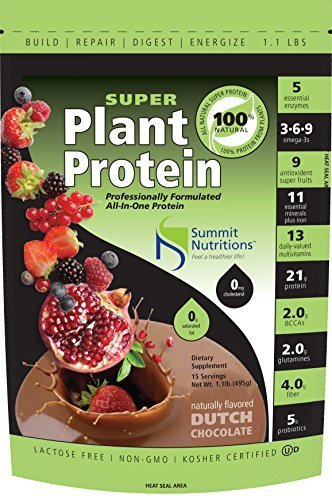 organic-super-plant-protein-all-in-one-formula-11lbs-dutch-chocolate-5-enzymes-21g-protein-omega-3-6
