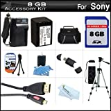 8GB Accessory Kit For Sony HDR-CX290, HDR-CX290/B HD Camcorder Includes 8GB High Speed SD Memory Card + Replacement (2300Mah) NP-FV70 Battery + Ac / DC Charger + Deluxe Case + 50