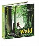 Bildband Sehnsucht Wald: Dieses National Geographic Buch betrachtet geheimnisvolle Lebensräume in Deutschland, Romantik und Mythos von Bäumen und Tieren im Forst: Wolf, Adler und Wildschwein
