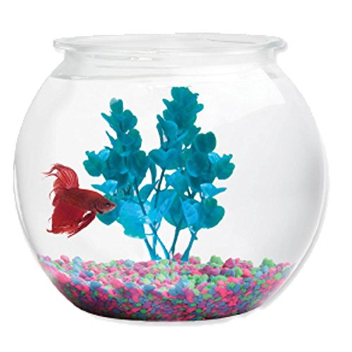 Kollercraft BC044076 Aqua Accents BL20RPET Round Plastic Bowl, 2 gallon (2 Gallon Plastic Fish Bowl compare prices)