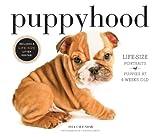 Puppyhood 2014 Wall Calendar
