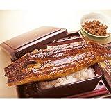 肉厚タップリの超特大サイズの国産うなぎ蒲焼き230-249gx1本(タレ、山椒付き)