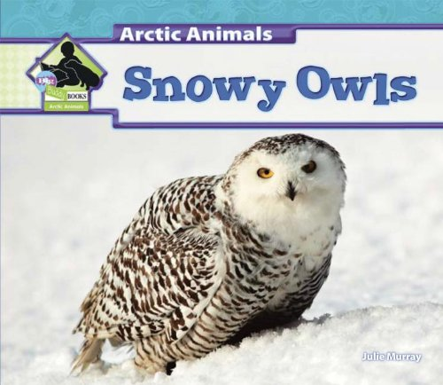 Snowy Owls (Arctic Animals)