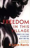 Freedom in This Village: Twenty-Five Years of Black Gay Men's Writing