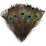 "High Quality Natural Peacock Feathers 10""-12"""