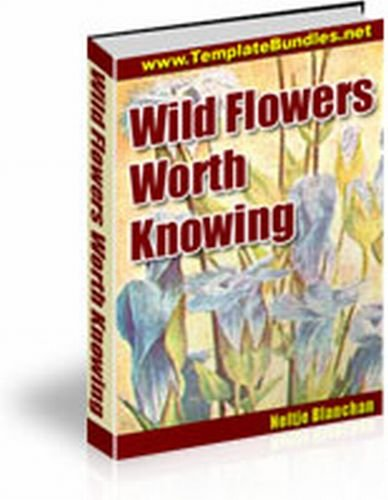 WILD FLOWERS WORTH KNOWING!