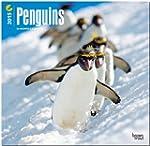 Penguins 2015 - Pinguine: Original Br...