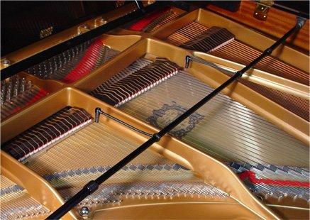 Earthworks Audio Pm40 Pianomic Series Instrument Condenser Microphone - Omni