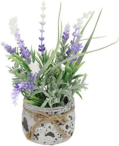 kunstpflanze lavendel im topf 18cm. Black Bedroom Furniture Sets. Home Design Ideas