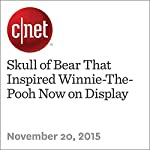 Skull of Bear That Inspired Winnie-The-Pooh Now on Display | Michael Franco