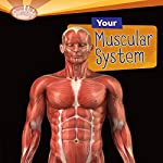 Your Muscular System | Rebecca L. Johnson