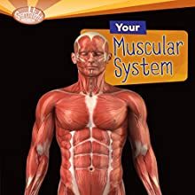 Your Muscular System Audiobook by Rebecca L. Johnson Narrated by  Intuitive