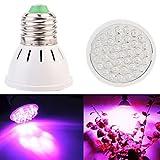 Ampoules à LED 2W