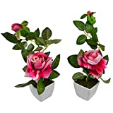 Thefancymart Set Of 2 Piece Artifical Rose Plants With Pots Style Code -8