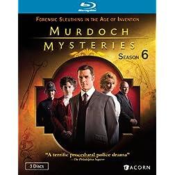 Murdoch Mysteries: Season Six [Blu-ray]
