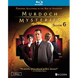 Murdoch Mysteries: Season Six [Blu-ray]