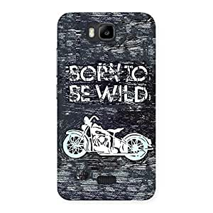 Premier Born to be Wild Design Back Case Cover for Honor Bee