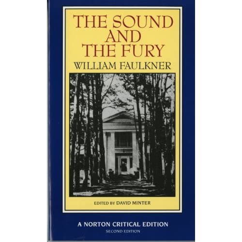 an overview of the main theme in the novel sound and the fury by william faulkner