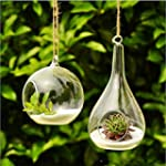 New Cute Clear Glass Round with 1 Hol...