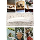 Ephemera Assorted Fold'n Please Cards - Set of 3 Cards