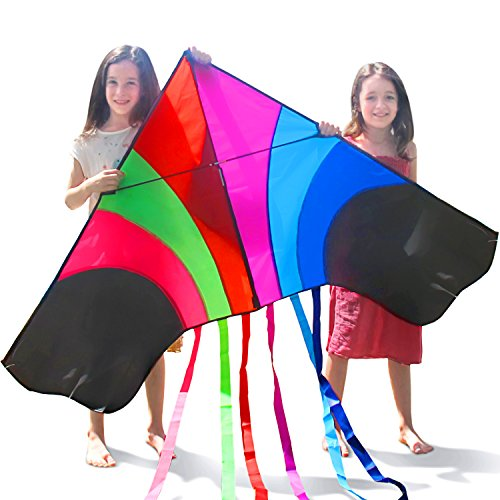 Tomi Kite - Huge Rainbow Kite That is Ideal for Kids and Adults - Easy to Launch in Stiff Wind or Soft Breeze - 60 Inches Wide - 100 Meter String - 6 Tails - Built to Last - Great for Family Fun and children (Thrasher Magazine Cap compare prices)