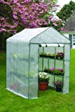 Apollo Mini Walk-In Greenhouse