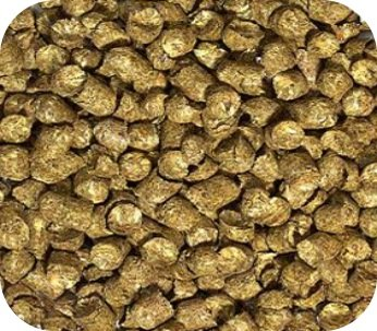 Grassland Tortoise Food Bulk 3 Lbs.