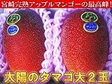 これが宮崎完熟アップルマンゴーの最高峰!【太陽のタマゴ】大玉2玉化粧箱入