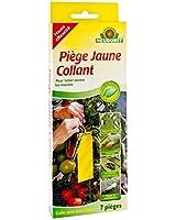florateck piege collant 25x10 cm jaune paquet de 10 cuisine maison. Black Bedroom Furniture Sets. Home Design Ideas