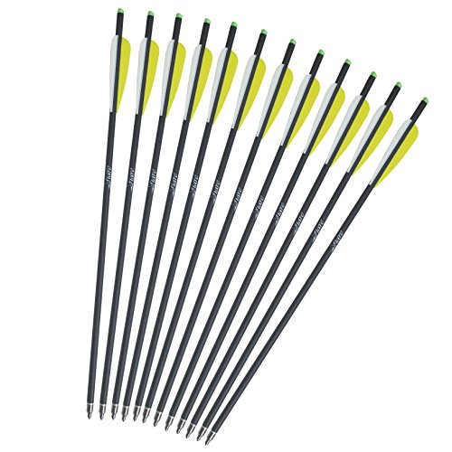 Viare 12Pcs Carbon Crossbow Bolt 20-Inch Crossbolt Arrows Fletched 4 Inch Vane with Field Point (Crossbow Bolt Inserts compare prices)