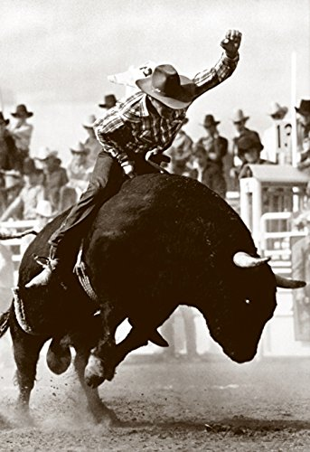 Bull Rider Poster, Bucking Bull, Vintage Rodeo, Bull Riding (Vintage Rodeo Posters compare prices)