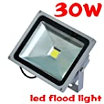 TSSS 30W Waterproof Floodlight Outdoo...