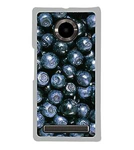 Blue Berries 2D Hard Polycarbonate Designer Back Case Cover for YU Yuphoria :: YU Yuphoria YU5010