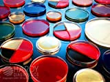 Blood Agar 8% (10 per pack)